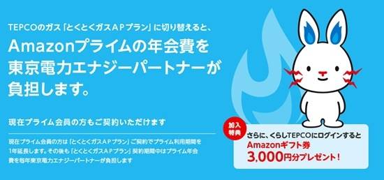 東京電力エナジーパートナーのとくとくガスAPプランキャンペーン