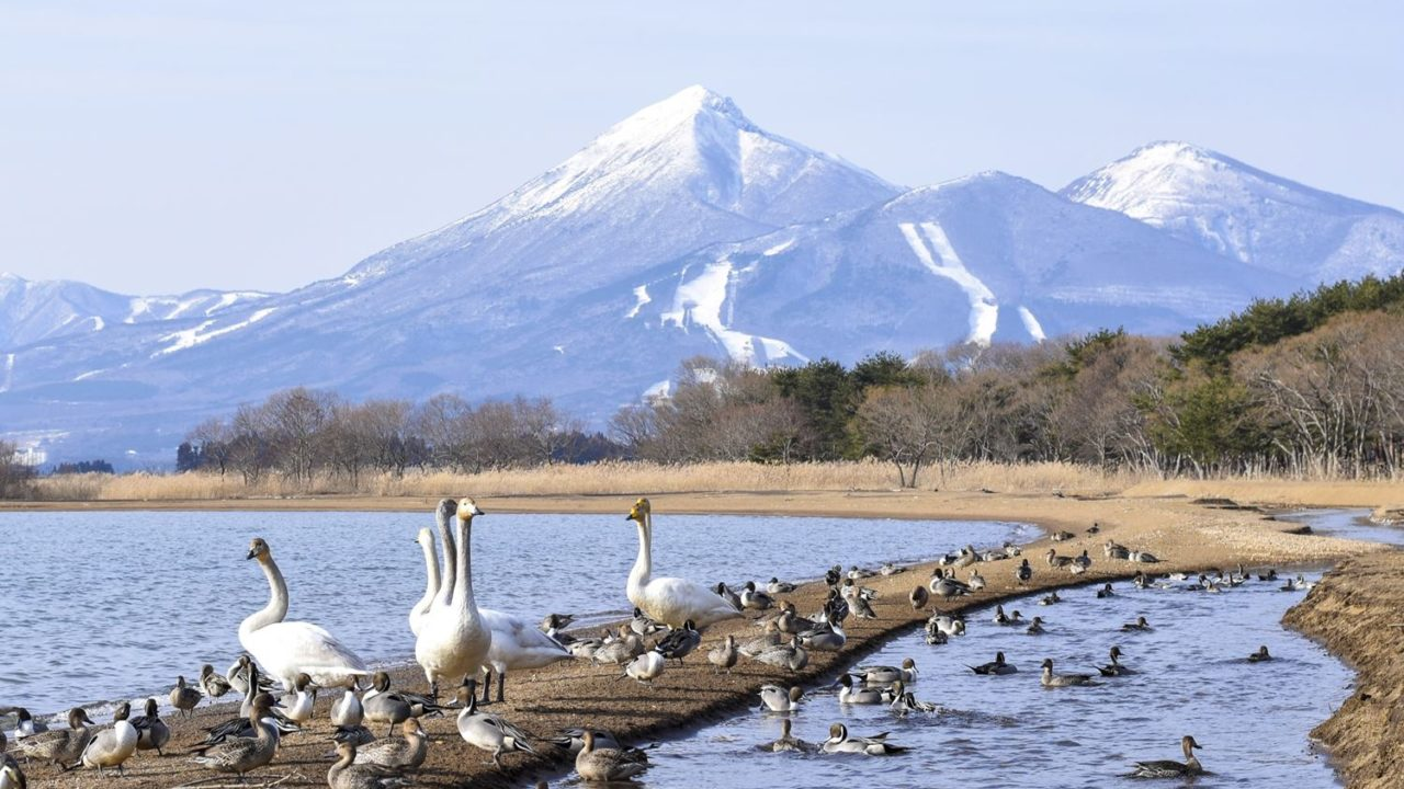 磐梯山と猪苗代湖イメージ